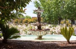 Altamont Apartments fountain on the grounds
